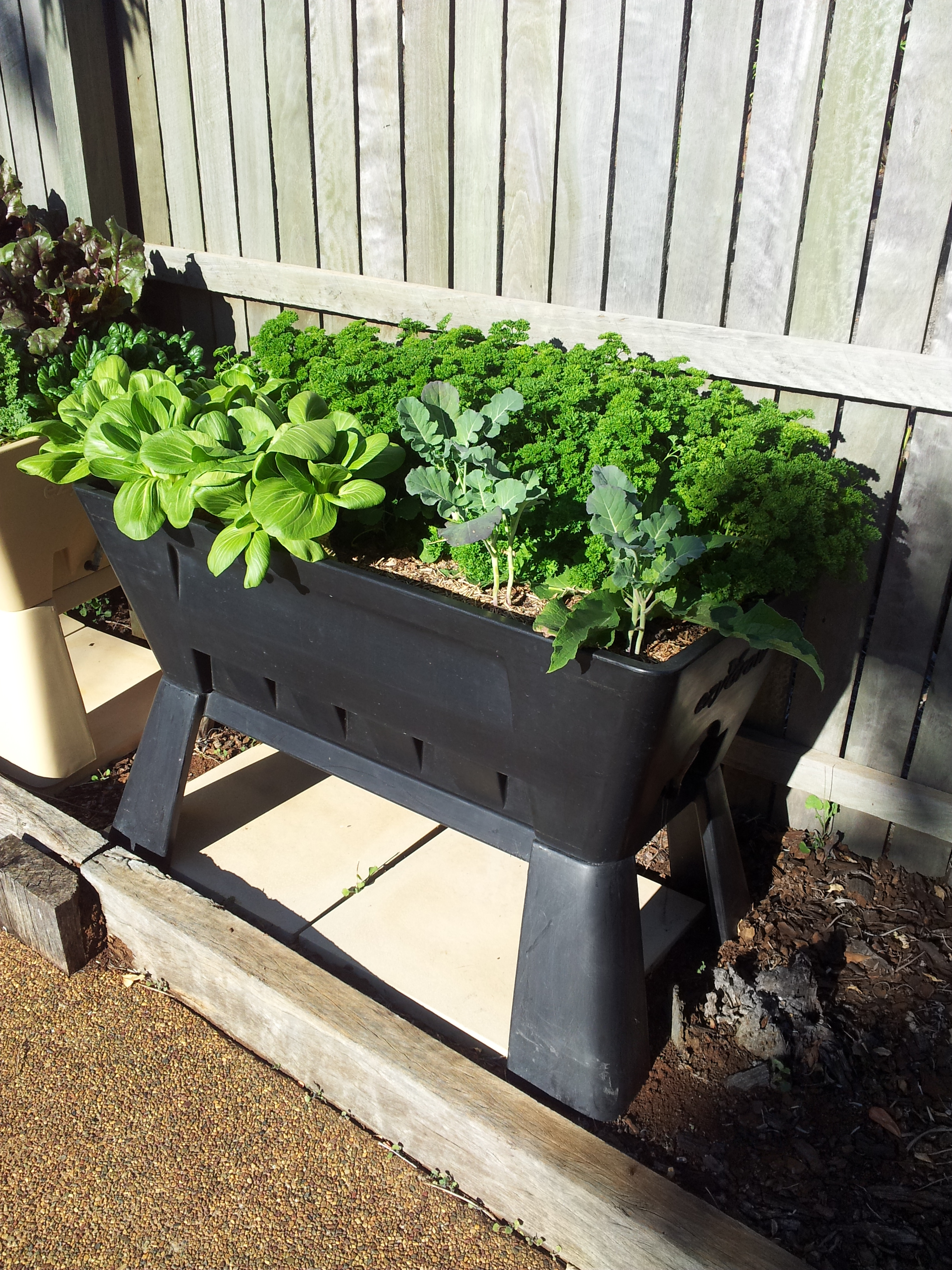 Garden Easi Planter Box in Black 2