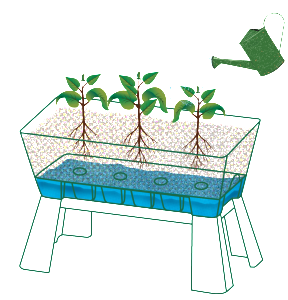 howtoPlantabox