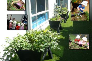Garden-Easi-Planter-Box-Garden-Bed-Childcare-Centres-poster
